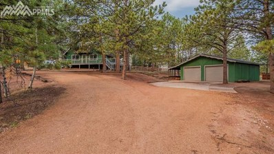 410 Evergreen Circle, Woodland Park, CO 80863 - MLS#: 6400465