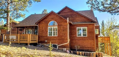 202 Spring Valley Circle, Divide, CO 80814 - MLS#: 6595089