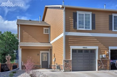 4802 Painted Sky View, Colorado Springs, CO 80916 - MLS#: 6700548