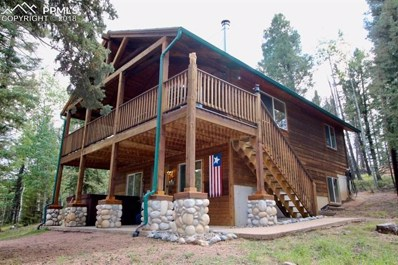 108 Spring Valley Lane, Florissant, CO 80816 - MLS#: 6802069