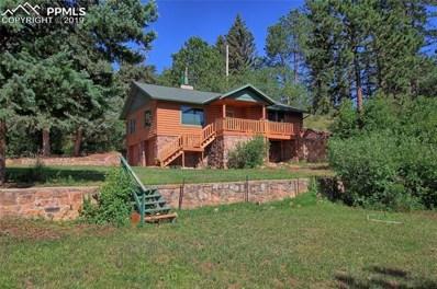 9390 Mariposa Trail, Cascade, CO 80809 - #: 6845080
