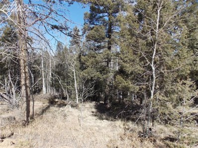 431 Cottonwood Lake Drive, Divide, CO 80814 - MLS#: 6937953