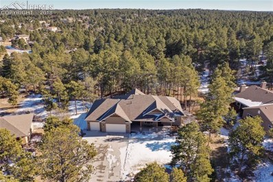 1232 Greenland Forest Drive, Monument, CO 80132 - MLS#: 6951063