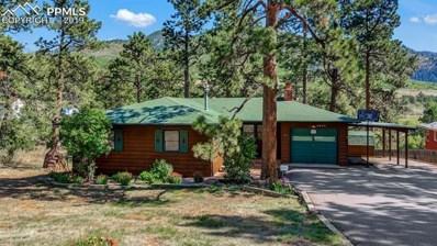 9820 Fountain Road, Cascade, CO 80809 - #: 6961578