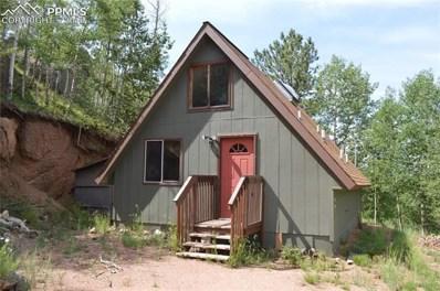 472 Grey Eagle Drive, Cripple Creek, CO 80813 - MLS#: 7100213