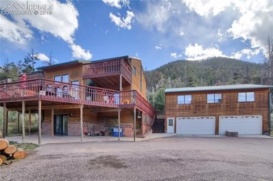 9255 Picabo Road, Cascade, CO 80809 - #: 7197306