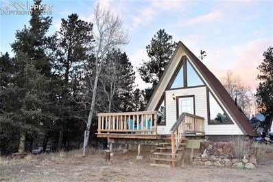37 Big Horn Lane, Florissant, CO 80816 - MLS#: 7227442