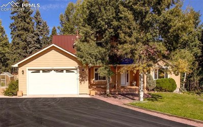 165 Joshua Road, Divide, CO 80814 - MLS#: 7235949