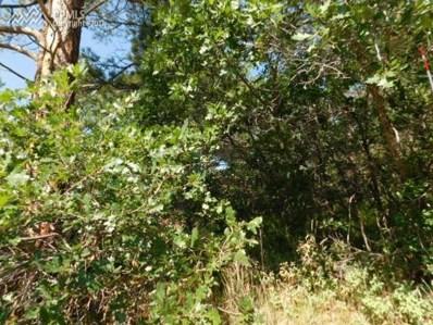 497 Tenderfoot Drive, Larkspur, CO 80118 - MLS#: 7293457
