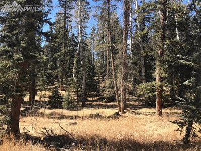 102 Bald Eagle View, Divide, CO 80814 - MLS#: 7303073