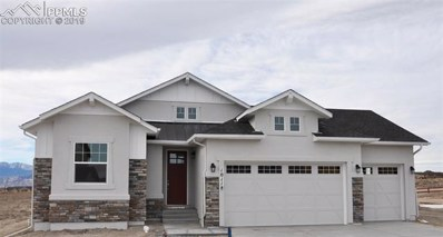 10118 Thrive Lane, Colorado Springs, CO 80924 - MLS#: 7366390