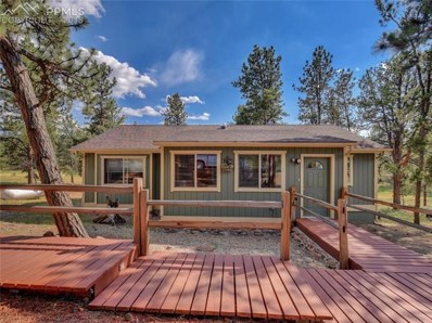 196 N Mountain Estates Road, Florissant, CO 80816 - MLS#: 7450130