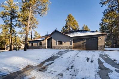 1351 Ridgestone Drive, Woodland Park, CO 80863 - MLS#: 7506242