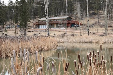 64 Arrowhead Road, Florissant, CO 80816 - MLS#: 7612977