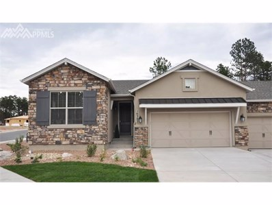 16383 Woodward Terrace, Monument, CO 80132 - MLS#: 7625420