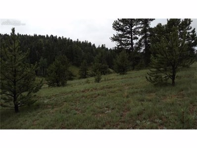651 Twin Lakes Drive, Divide, CO 80814 - MLS#: 765436