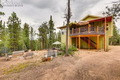 343 Lost Lake Drive, Divide, CO 80814 - MLS#: 7688225