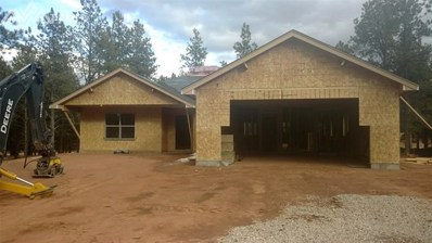 1333 Firestone Drive, Woodland Park, CO 80863 - MLS#: 7696757