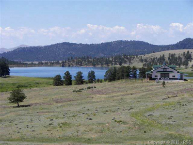 224 Lakeview Heights, Florissant, CO 80816 - MLS#: 770690