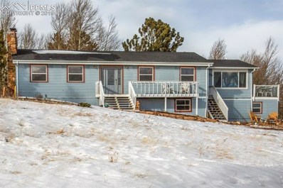 199 Pine Bluff Road, Divide, CO 80814 - MLS#: 7721667