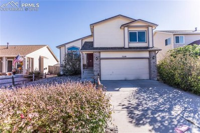 7229 Moss Bluff Court, Fountain, CO 80817 - MLS#: 7832075