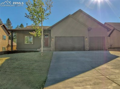 1145 Ptarmigan Drive, Woodland Park, CO 80863 - MLS#: 7845150