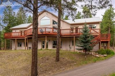 1040 Wintergreen Court, Woodland Park, CO 80863 - MLS#: 8105404