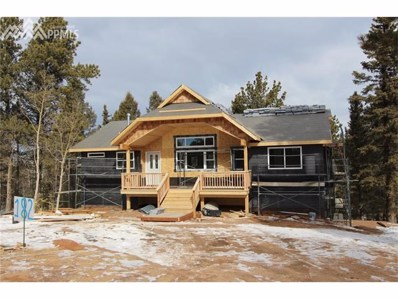 1567 N Mountain Estates Road, Florissant, CO 80816 - MLS#: 8115586