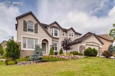 13753 Windy Oaks Road, Colorado Springs, CO 80921 - MLS#: 8178428