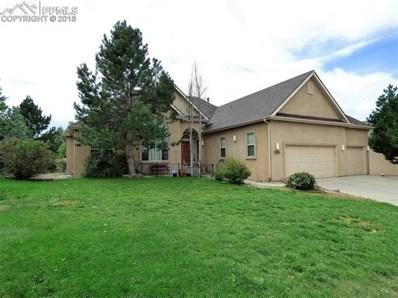 9815 Pleasanton Drive, Colorado Springs, CO 80920 - MLS#: 8210682