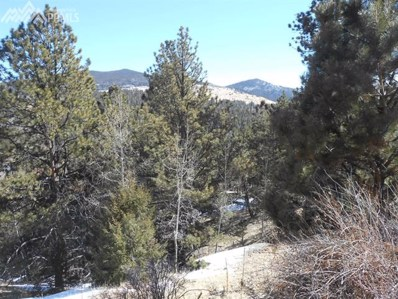 258 El Paso Court, Cripple Creek, CO 80813 - MLS#: 8242762