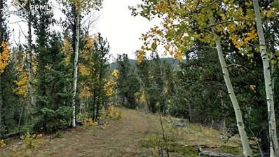 298 Brown Bear Drive, Cripple Creek, CO 80813 - MLS#: 8307442
