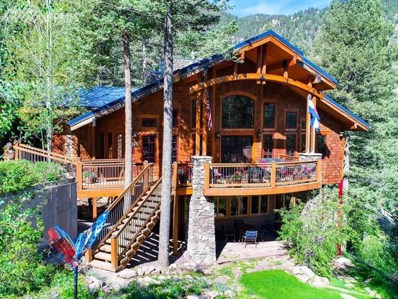 8215 Anemone Hill Road, Cascade, CO 80809 - MLS#: 8333042