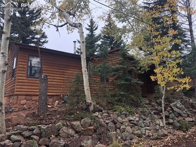 311 Dewell Road, Woodland Park, CO 80863 - MLS#: 8377360