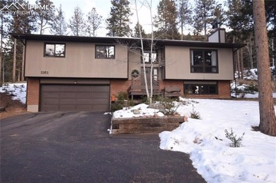 1161 Pine Ridge Road, Woodland Park, CO 80863 - MLS#: 8412312