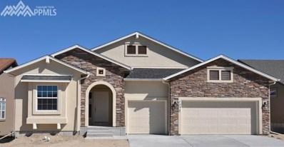 7234 Silver Buckle Drive, Colorado Springs, CO 80923 - MLS#: 8706912