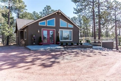 13335 Black Forest Road, Colorado Springs, CO 80908 - MLS#: 8825632