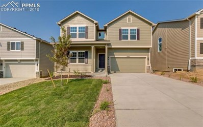 19463 N Lindenmere Drive, Monument, CO 80132 - MLS#: 8960360