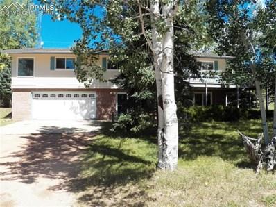 200 Comanche Trail, Woodland Park, CO 80863 - MLS#: 8996483