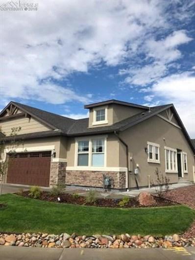 11422 Rill Point, Colorado Springs, CO 80921 - MLS#: 9061171