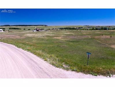 13385 Forest Green Drive, Elbert, CO 80106 - MLS#: 9130279