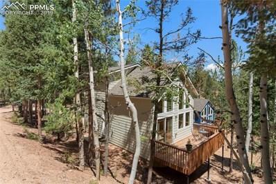 509 Wakanda Trail, Woodland Park, CO 80863 - #: 9150892
