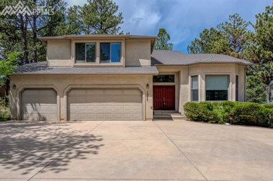 1355 Old Antlers Way, Monument, CO 80132 - MLS#: 9179072