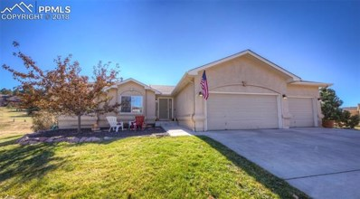 20236 Kenneth Lainer Drive, Monument, CO 80132 - MLS#: 9235003