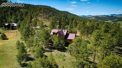 1042 County 112, Florissant, CO 80816 - MLS#: 9320314