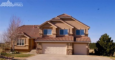 16955 Cherry Crossing Drive, Colorado Springs, CO 80921 - MLS#: 9399430