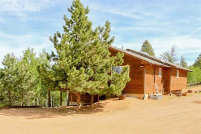 209 Utah Way, Florissant, CO 80816 - MLS#: 9406835