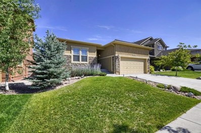 4862 Preachers Hollow Trail, Colorado Springs, CO 80924 - MLS#: 9420903
