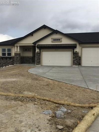 12737 Pensador Drive, Colorado Springs, CO 80921 - MLS#: 9491976