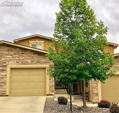 3852 Homestead Ridge Heights, Colorado Springs, CO 80917 - MLS#: 9502852
